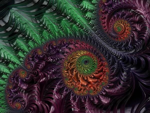 Digital Art - Peacock's Eye by Paisley O'Farrell