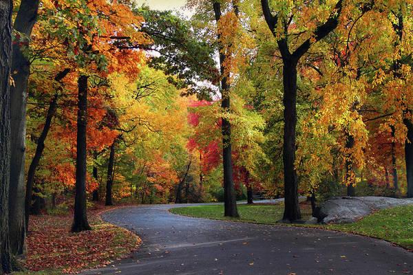 Photograph - Peak Autumn Path by Jessica Jenney