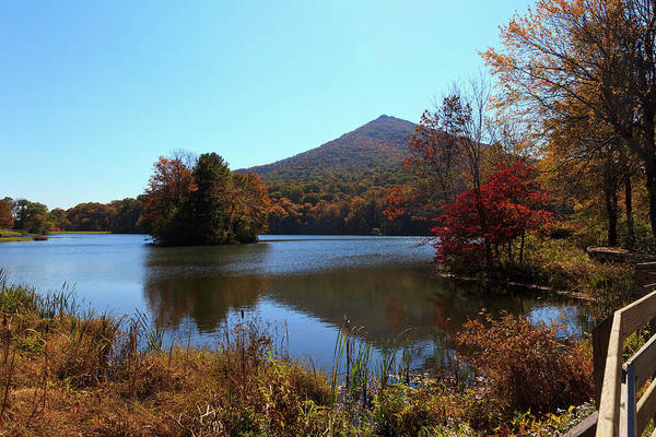 Photograph - Peaks Of Otter Lake by Jill Lang