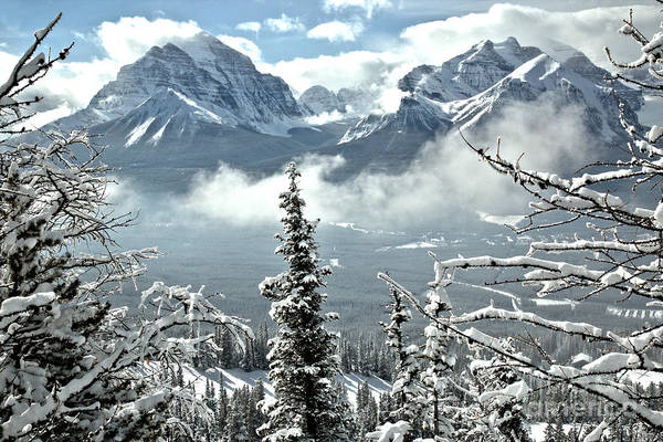 Photograph - Peaks Through The Trees At Lake Louise by Adam Jewell