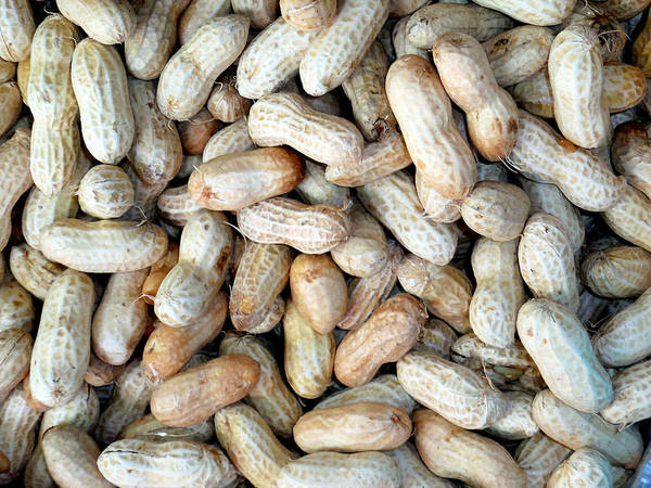 Protein Painting - Peanuts On Sale At Fruit Market by Jeelan Clark