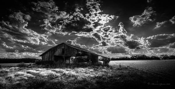 Tin Roof Wall Art - Photograph - Peanuts This Year by Marvin Spates