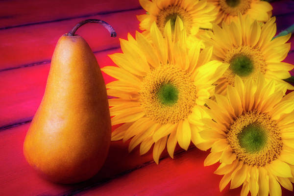 Wall Art - Photograph - Pear And Sunflowers by Garry Gay
