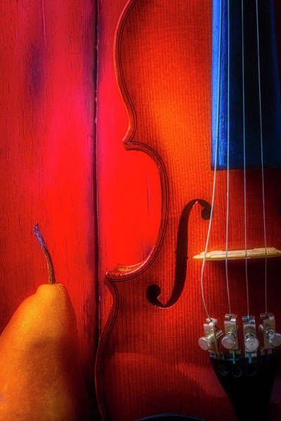Wall Art - Photograph - Pear And Violin by Garry Gay