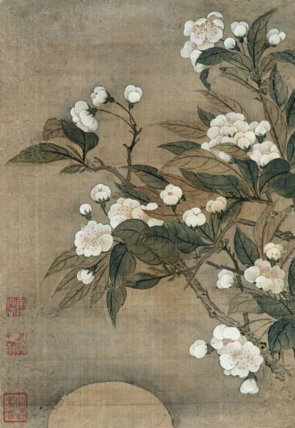 Full Bloom Painting - Pear Blossom And Moon by Yun Shouping