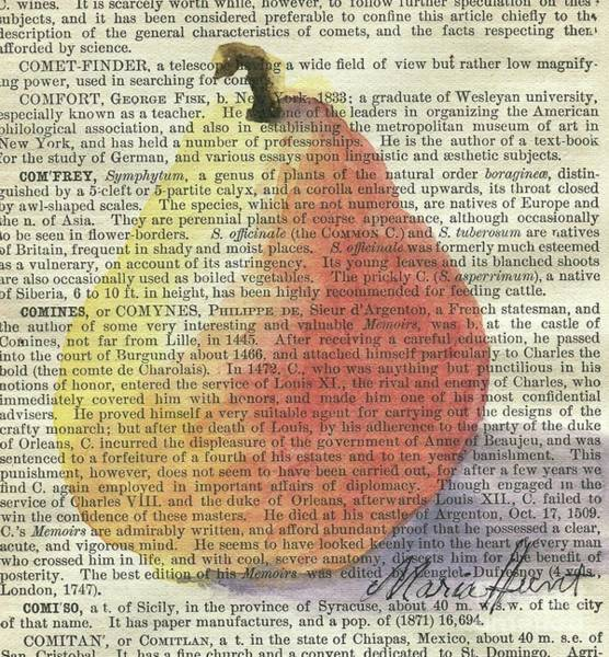 Wall Art - Painting - Pear In The Square by Maria Hunt