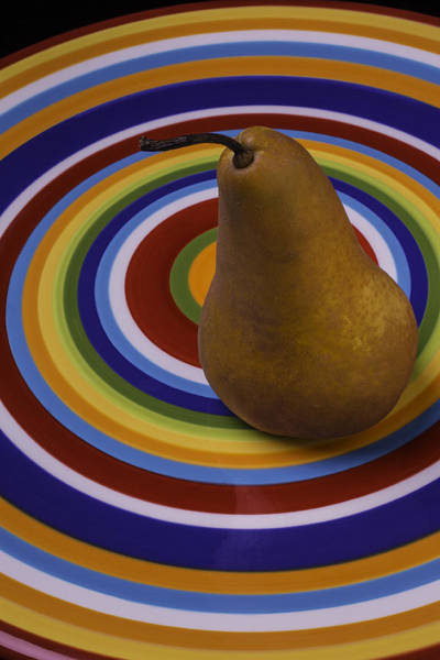 Golden Circle Photograph - Pear On Circle Plate by Garry Gay