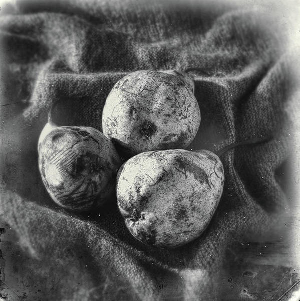 Photograph - Pears #117 by Andrey Godyaykin