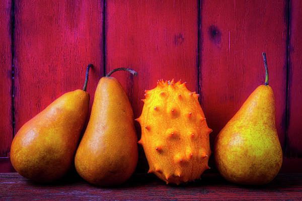 Wall Art - Photograph - Pears And Asian Pear by Garry Gay