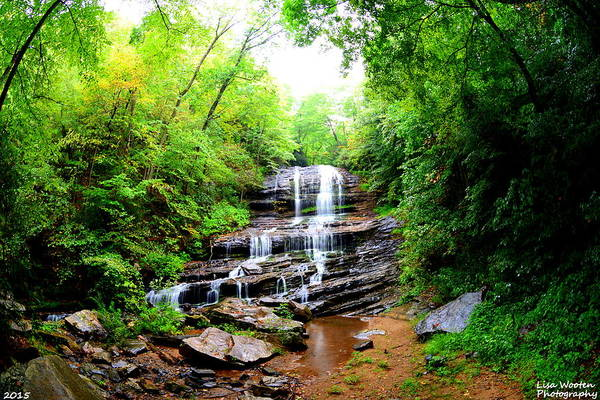 Photograph - Pearson's Falls by Lisa Wooten