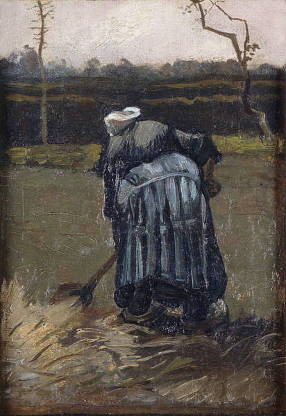 Forsythia Painting - Peasant Woman By The Digging, 1885 by Vincent Van Gogh