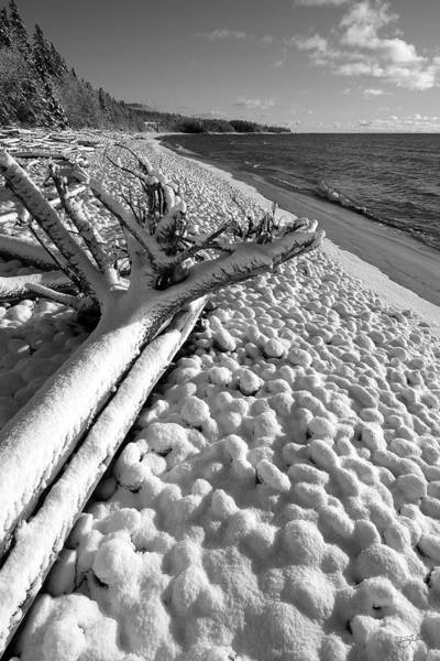Photograph - Pebble Beach Winter by Doug Gibbons