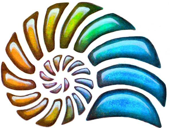 Painting - Pebbles Nautilus by Sarah Krafft