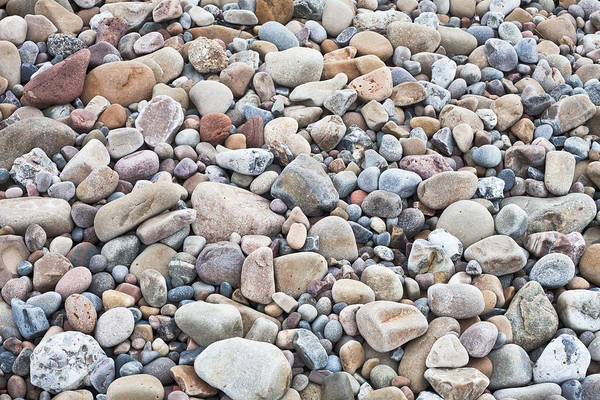 Wall Art - Photograph - Pebbles by Tom Gowanlock