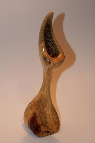 Wall Art - Sculpture - Pecan Flytrap - Carya Dionaea by Shawn Roberts