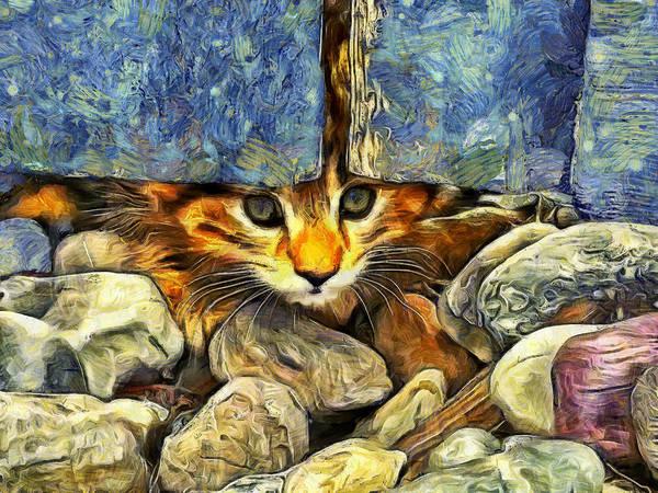 Digital Art - Peek A Boo by Mark Kiver
