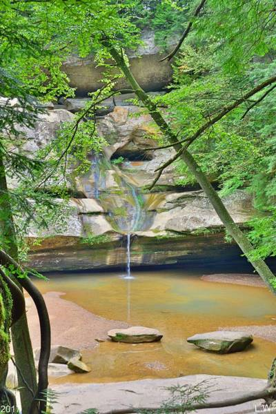Photograph - Peek A Boo View Of Cedar Falls At Hocking Hill by Lisa Wooten