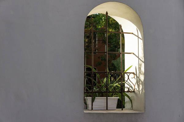 Photograph - Peeking Through The Garden Fence Window - Geometric Bars And Shadows by Georgia Mizuleva
