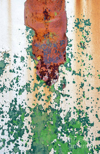 Corrosion Photograph - Peeling Away Time by Tim Gainey