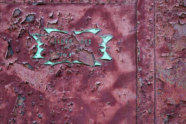 Photograph - Peeling Door Abstract by Stuart Litoff