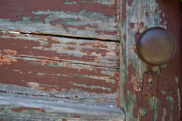 Photograph - Peeling Knob by Dylan Punke