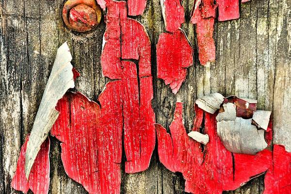 Photograph - Peeling Paint Abstract by Lisa Wooten
