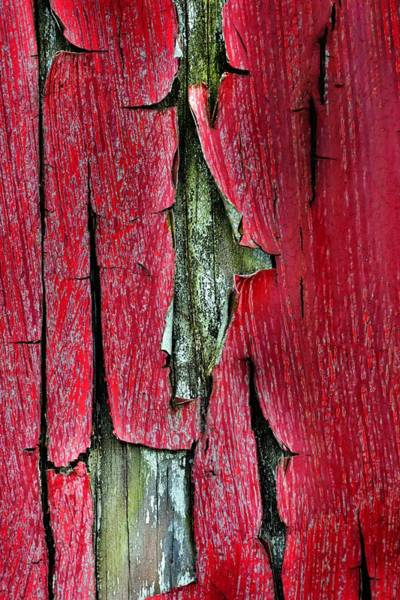 Photograph - Peeling Paint Abstract Vertical by Lisa Wooten