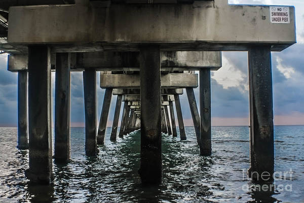 Photograph - Peering Beneath The Pier by Gary Keesler