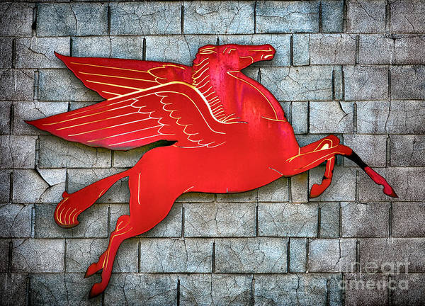 Wall Art - Photograph - Pegasus by Olivier Le Queinec