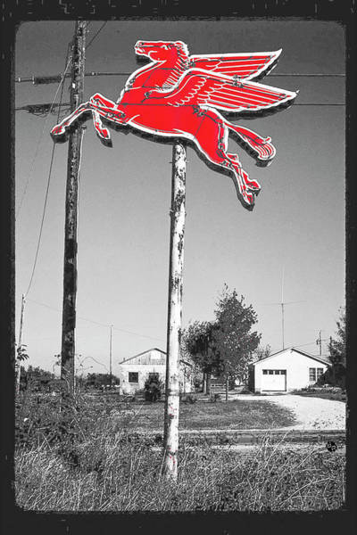 Pyrography - Pegasus by Tony Rubino