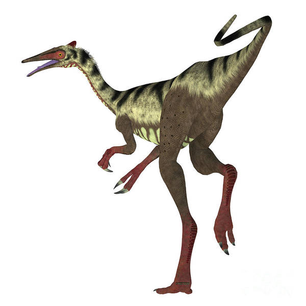 Primeval Painting - Pelecanimimus Dinosaur Tail by Corey Ford