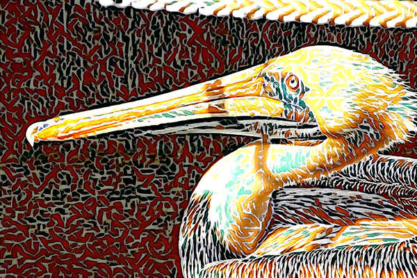 Photograph - Pelican Abstract by Alice Gipson