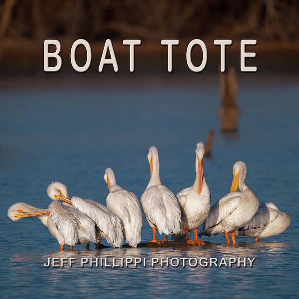 Photograph - Pelican Boat Tote by Jeff Phillippi