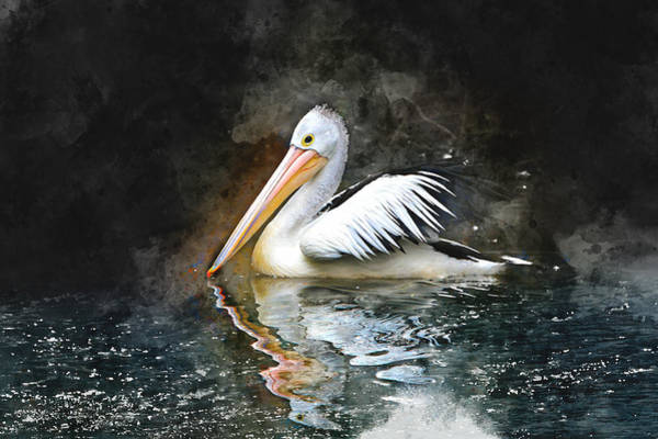Pelican Mixed Media - Pelican Brief by Marvin Blaine