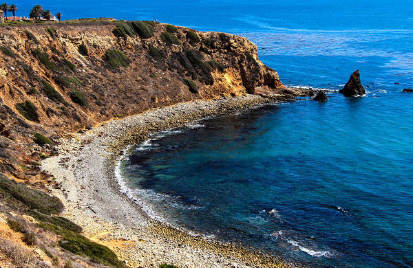 Point Vicente Wall Art - Photograph - Pelican Cove by Ed Clark
