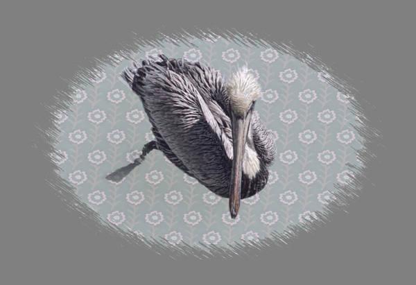 Pelican Mixed Media - Pelican Edit by Rosalie Scanlon