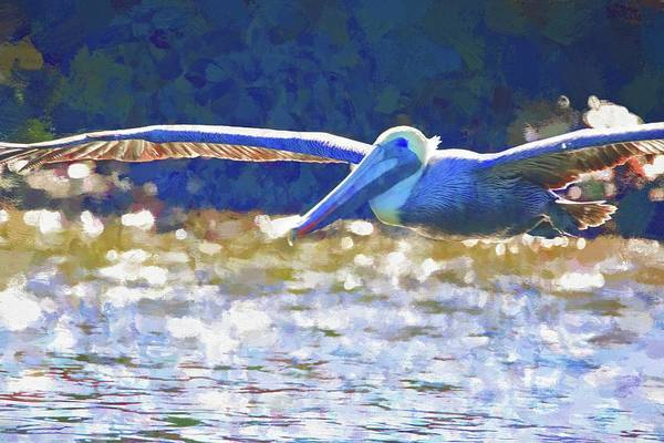Photograph - Pelican Flight Time by Alice Gipson