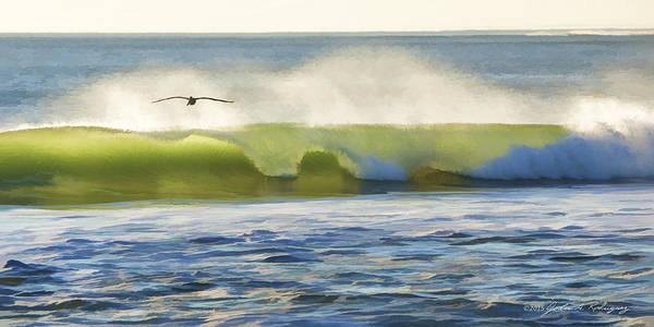 Pelican Flying Over Wind Wave Art Print