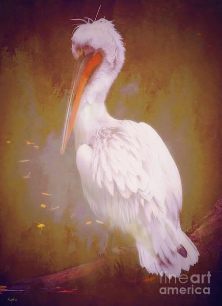 Pelican Mixed Media - Pelican On A Branch by KaFra Art