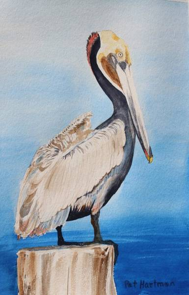 Pylon Painting - Pelican On Post by Pat Hartman