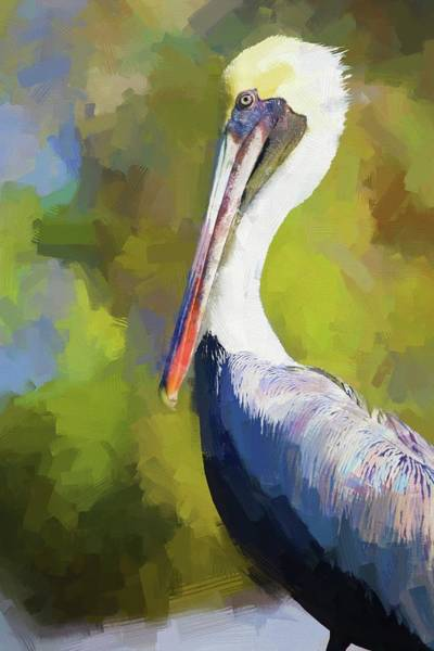 Photograph - Pelican Portrait by Alice Gipson