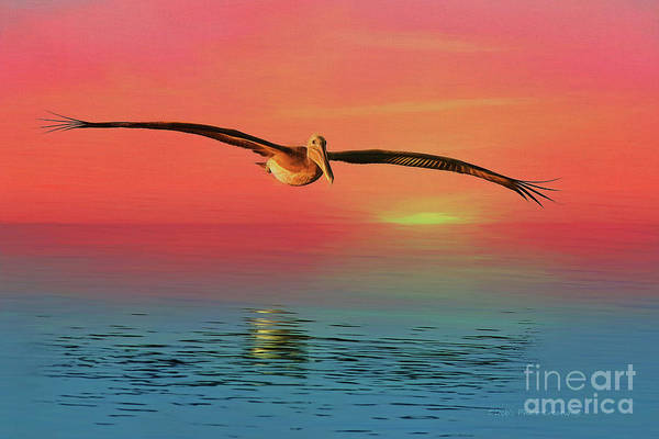 Wall Art - Painting - Pelican Sunset by Deborah Benoit
