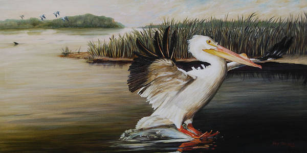 American White Pelican Wall Art - Painting - Pelicans At The Confluence by Dreyer Wildlife Print Collections