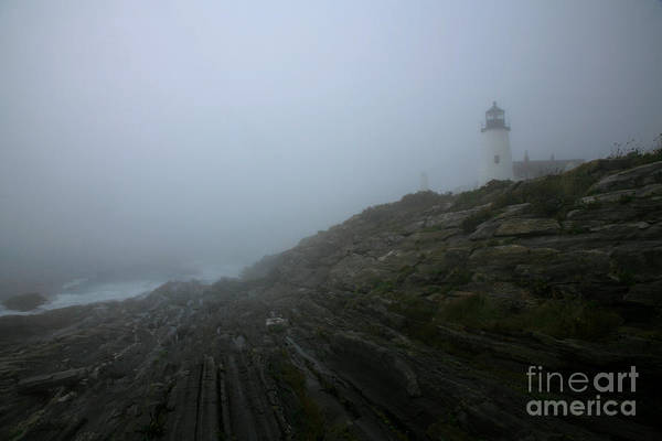 Wall Art - Photograph - Pemaquid And The Sea by Timothy Johnson