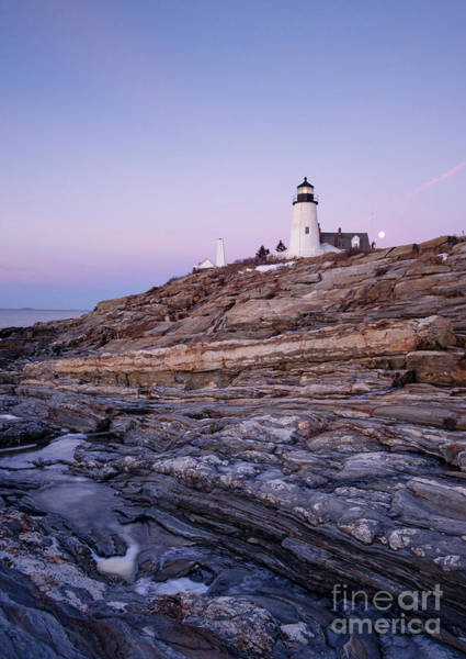 Photograph - Pemaquid Light At Dawn, New Harbor, Maine  -81352-81354 by John Bald