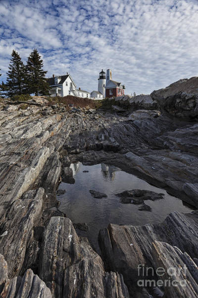 Wall Art - Photograph - Pemaquid Lighthouse by Timothy Johnson