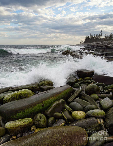 Photograph - Pemaquid Point, Bristol, Maine  -60116 by John Bald