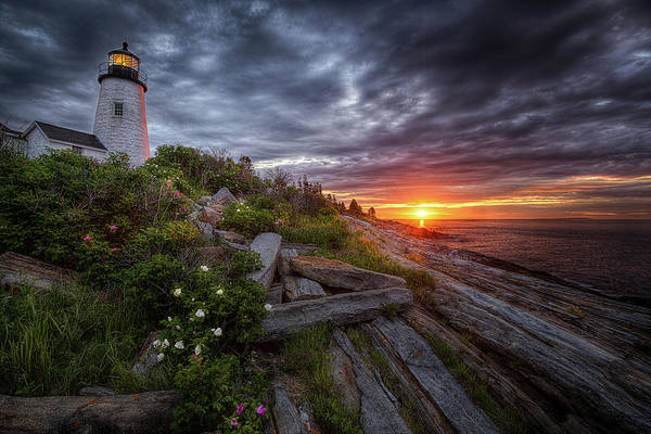 Photograph - Pemaquid Sunrise by Neil Shapiro