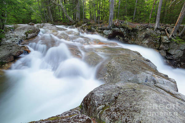 Photograph - Pemigewasset River - Franconia Notch, White Mountains by Erin Paul Donovan