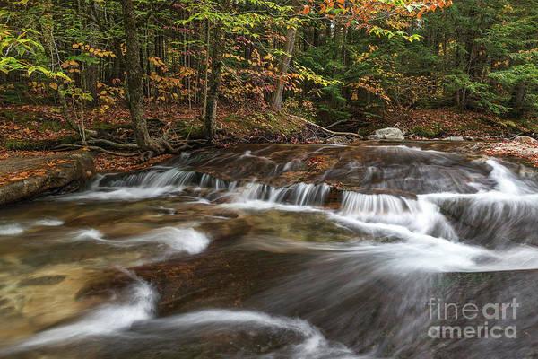 Photograph - Pemigewasset River by Sharon Seaward